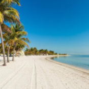 This image has an empty alt attribute; its file name is KeyBiscayne-Real-Estate1-1.png